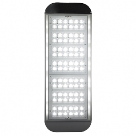 Уличный cветодиодный светильник ДКУ 07-182-50-Ш